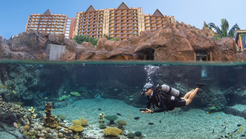 aulani-reef-experience
