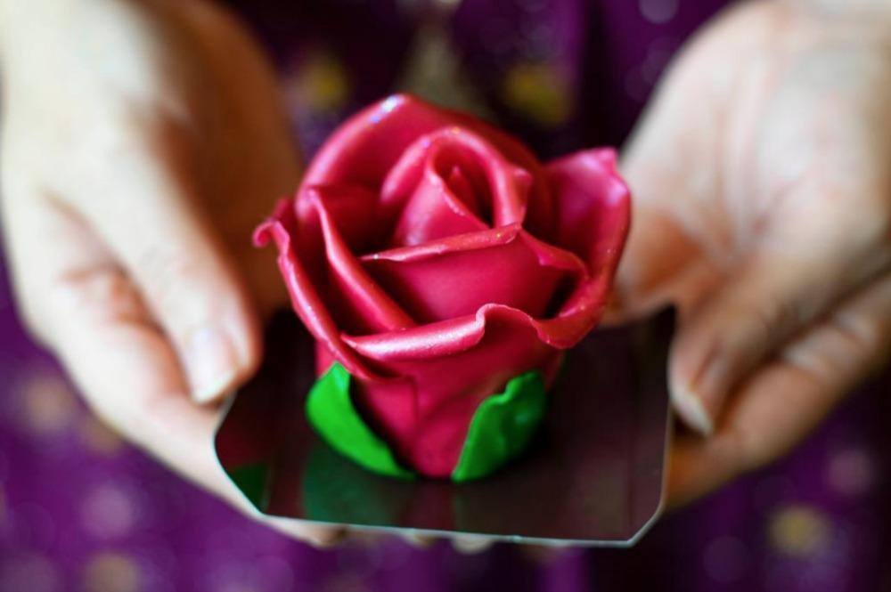 imagination-pink-chocolate-rose