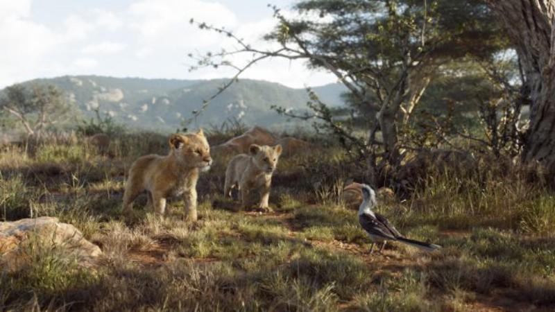 LionKing2019-02