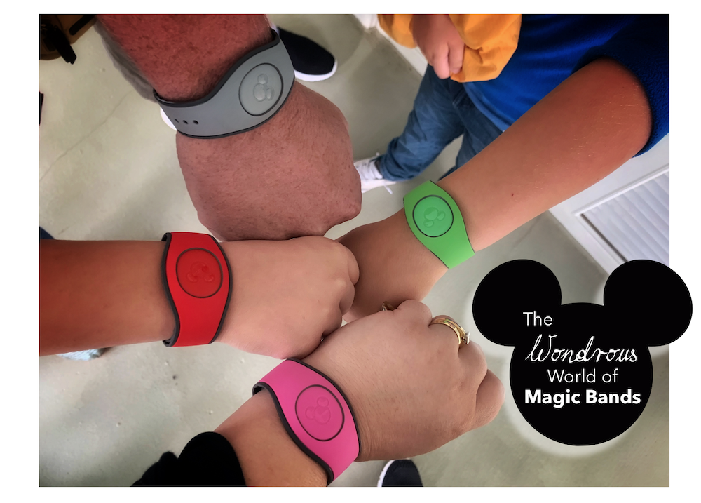 The Wondrous World of MagicBands