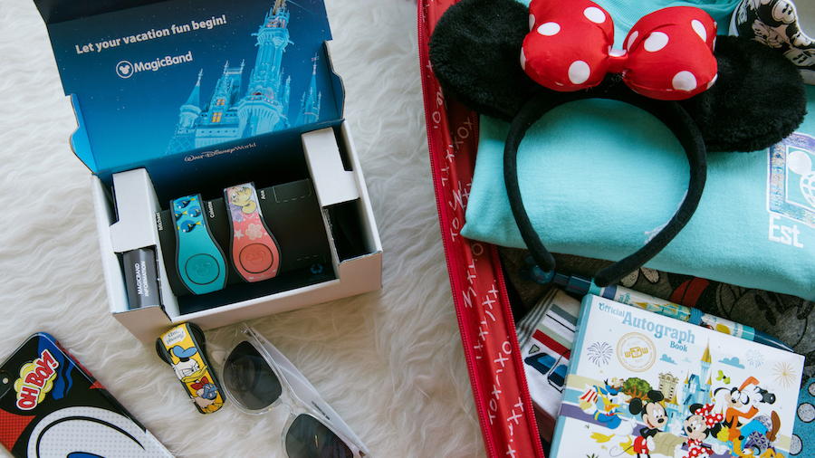 Credit/Image: Disney Parks Blog