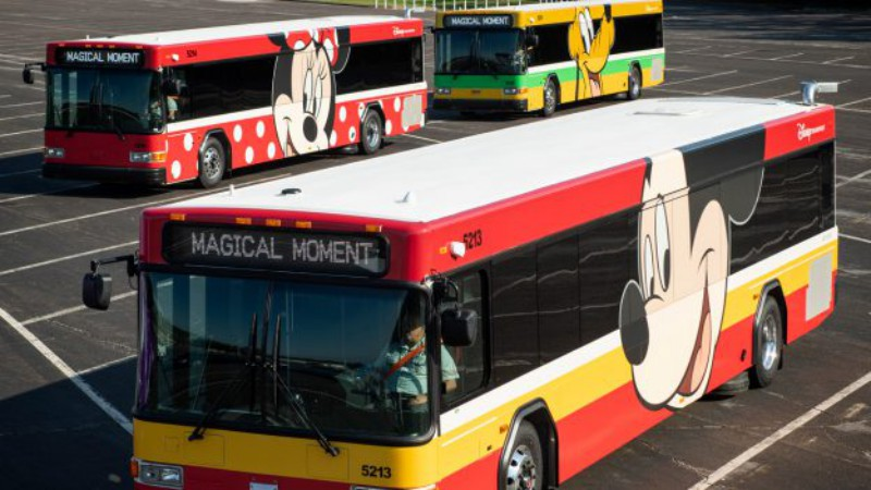 Disney World Transportation Information - Disney Bus Schedules