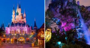 New Disney After Hours Event Dates Added for Magic Kingdom and Animal Kingdom
