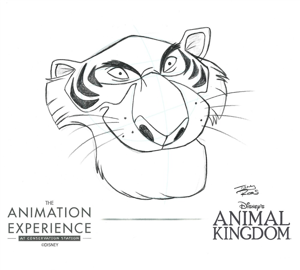 animation-experience-sheerkhan