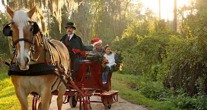 Carriage & Wagon Rides at Disney's Fort Wilderness Resort & Campground Temporarily Unavailable