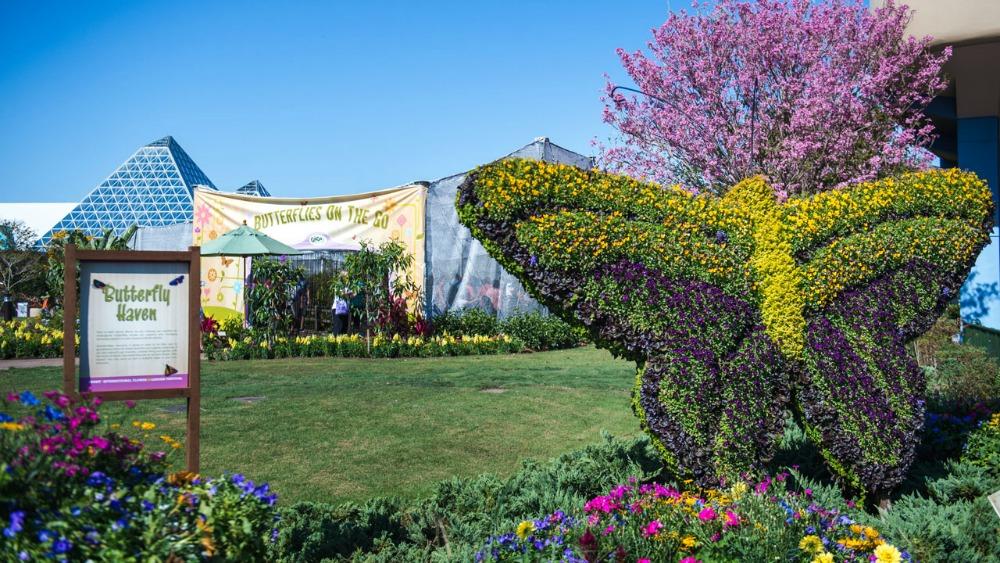 2020-epcot-flower-garden