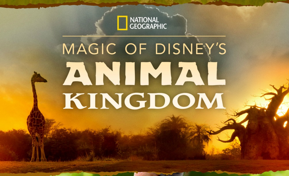 Magic of Disney's Animal Kingdom' Series Launches September 25 on Disney  Plus