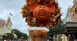 Fall Snacks at Disney World that Will Get You into the Halloween Spirit!